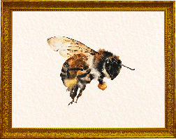 Watercolour bee carrying pollen