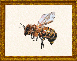 watercolour bee painting